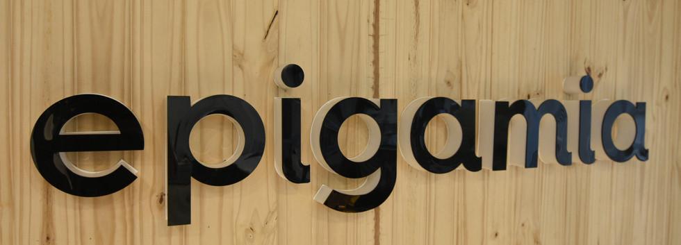 Logo, Epigamia Office