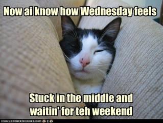 Wednesdays.....