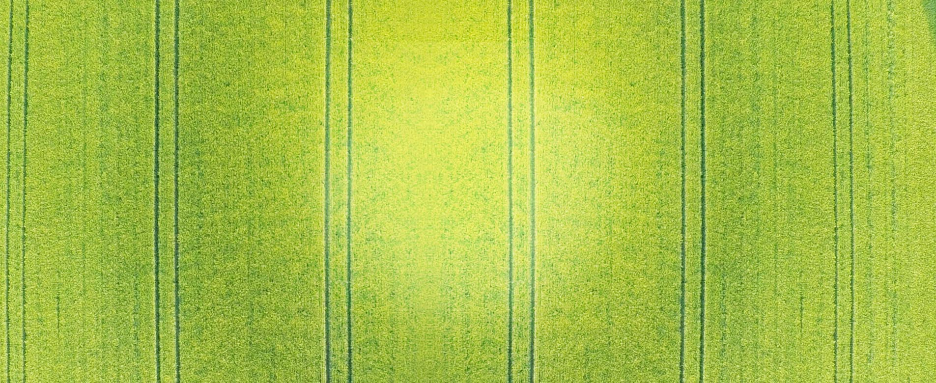 www.visiotili.maatalous1