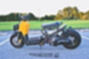 Honda Ruckus.jpg
