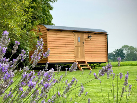 A very special Haus Hut!