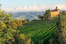 Flavours of Italy: Glenwillow Wines special event