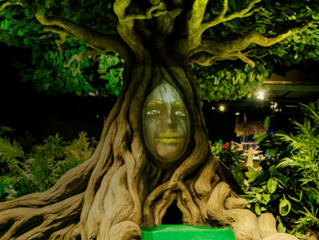 The return of Treetop Adventure Golf in Leicester