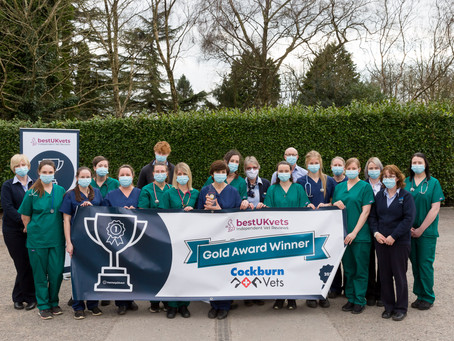 Cockburn Vets in Leicestershire awarded Gold in the Best UK Vet Awards 2021