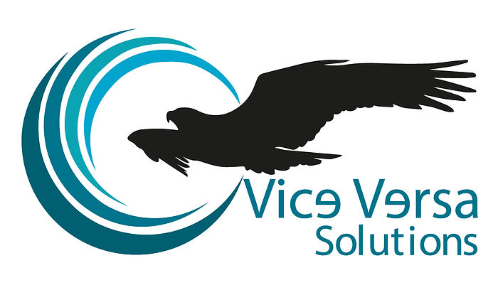 Vice Versa.jpg