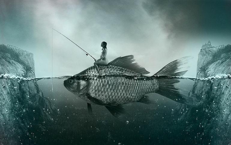 fish-1372923_1280.jpg