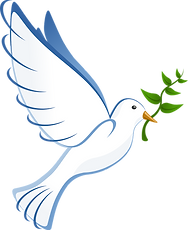 dove-41260_1280_edited.png