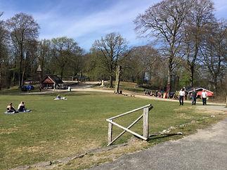 Danmark_på_toppen_7.jpg