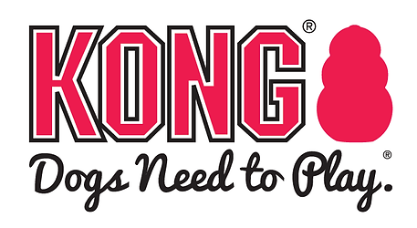 KONG Logo.png