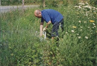 coltivazioni 03.jpg