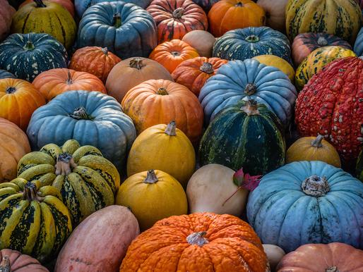 E' Arrivato Ottobre e tornano le zucche!