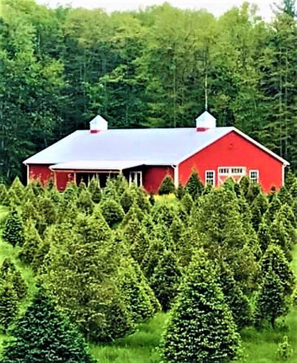 barn-farm-pic.jpg