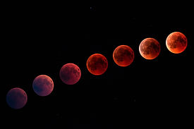Canva - Blood Moon in the Night Sky.jpg