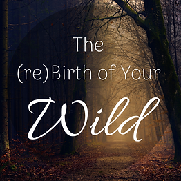 The (re)Birth of Your Wild.png