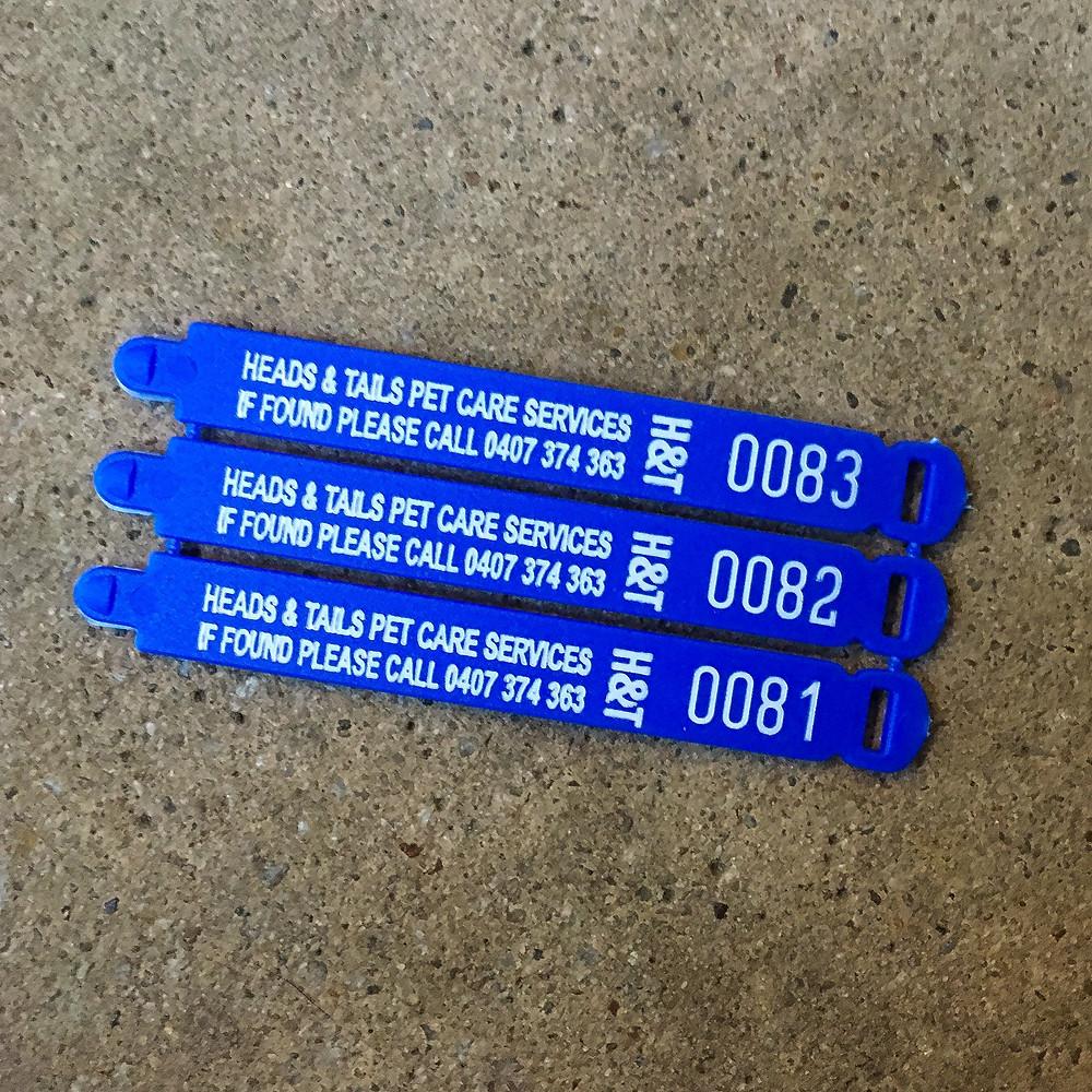 Heads & Tails ID dog tags