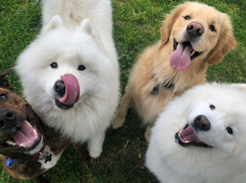 What a happy group of friends!