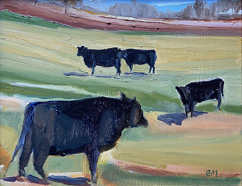 December 13th My cows on Western Road