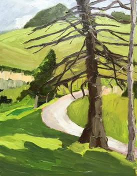 Keurner's Farm Views