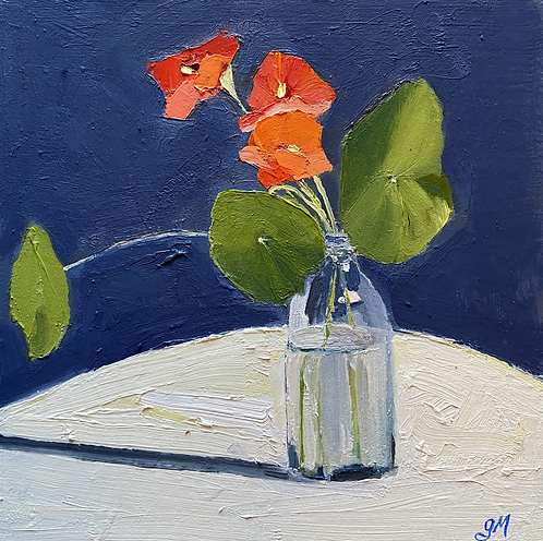 December 9-Nasturtium on Navy