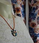 Kitties 12 14.jpg