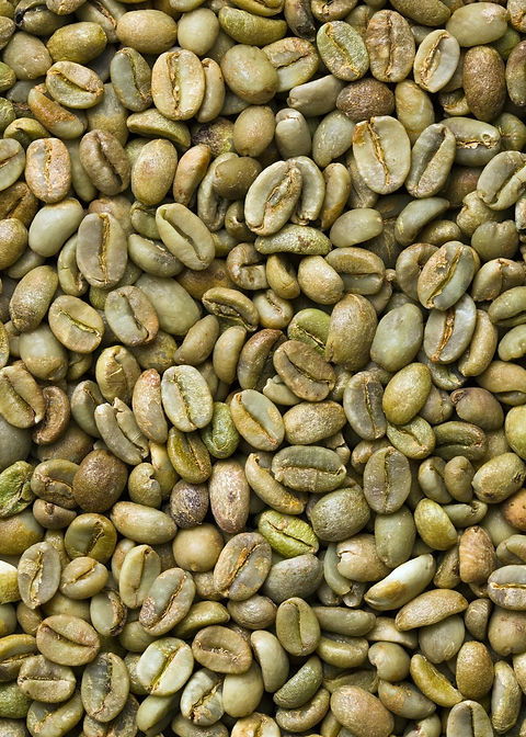 29548935-green-coffee-background.jpg
