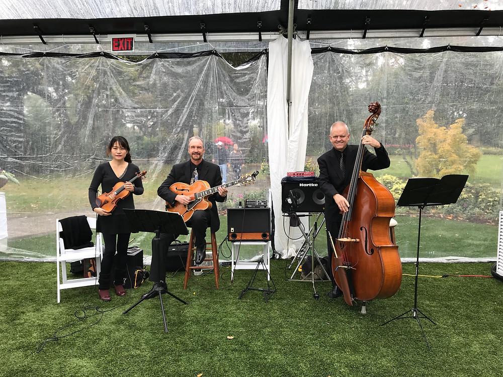 jazz violin with Nick DiGennaro trio