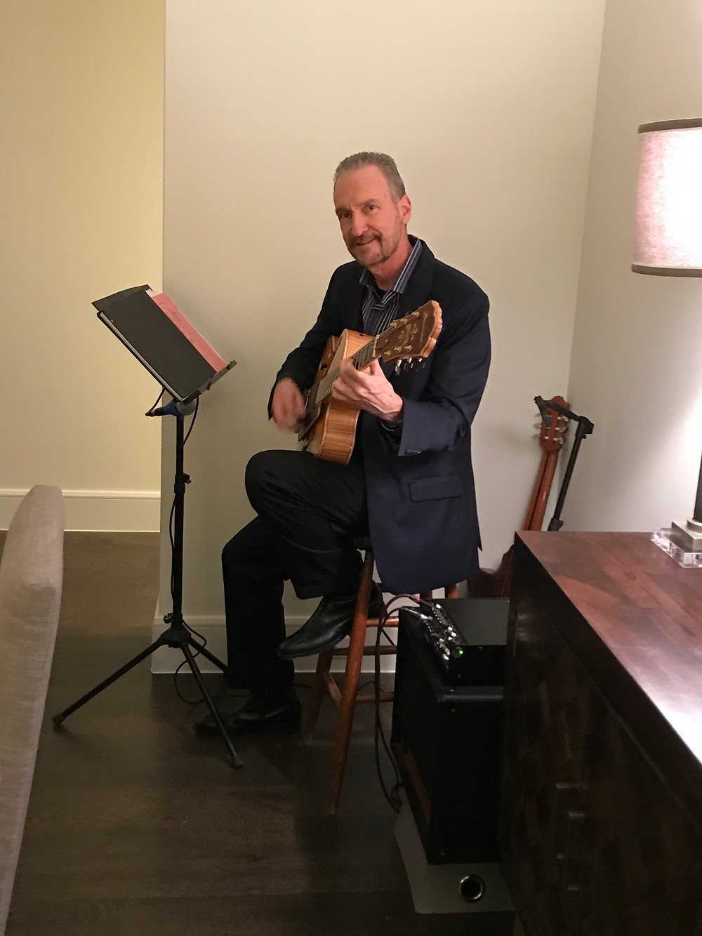 Guitar music for Highland Park party