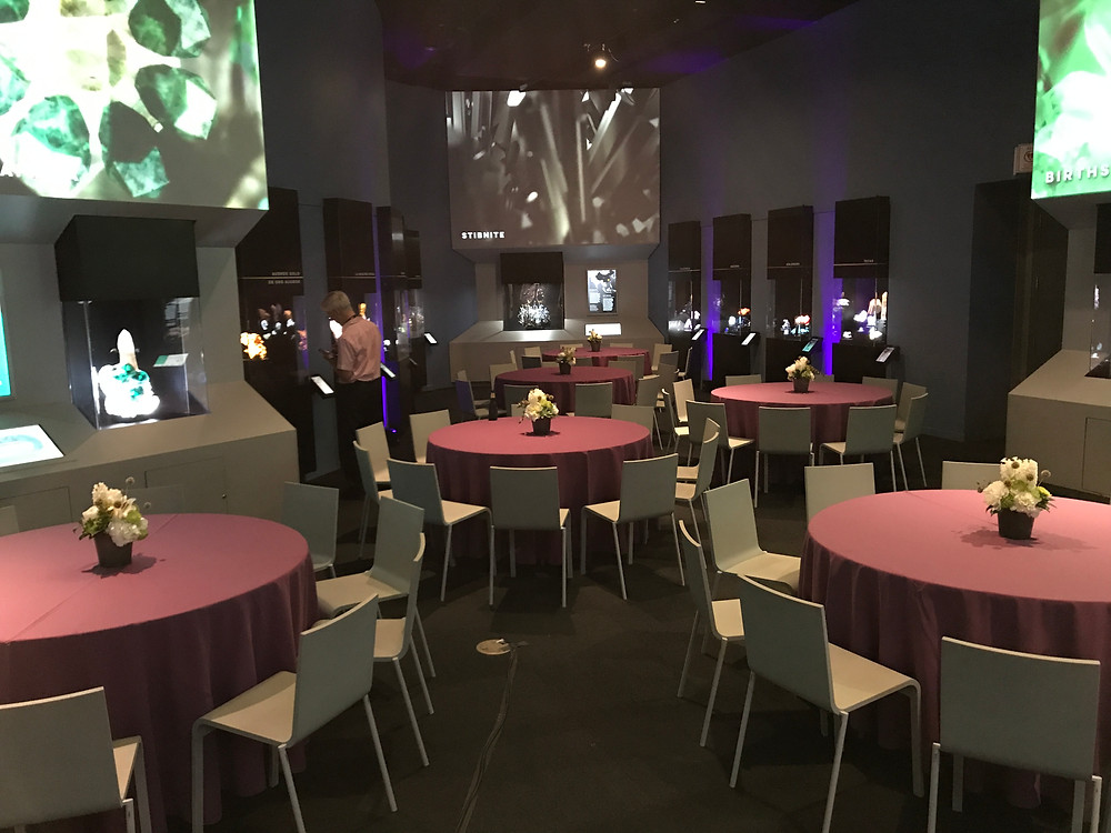 Event space at the Perot Museum