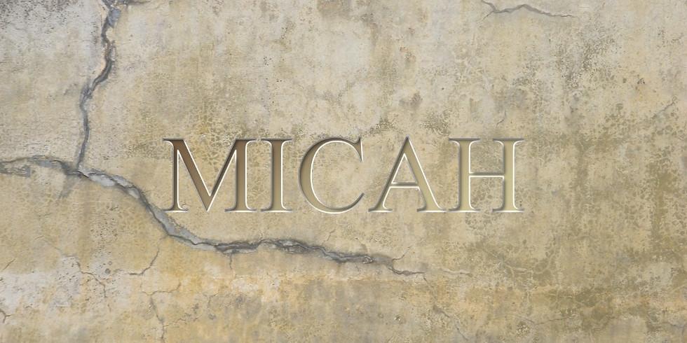 Bible Study: Micah 7
