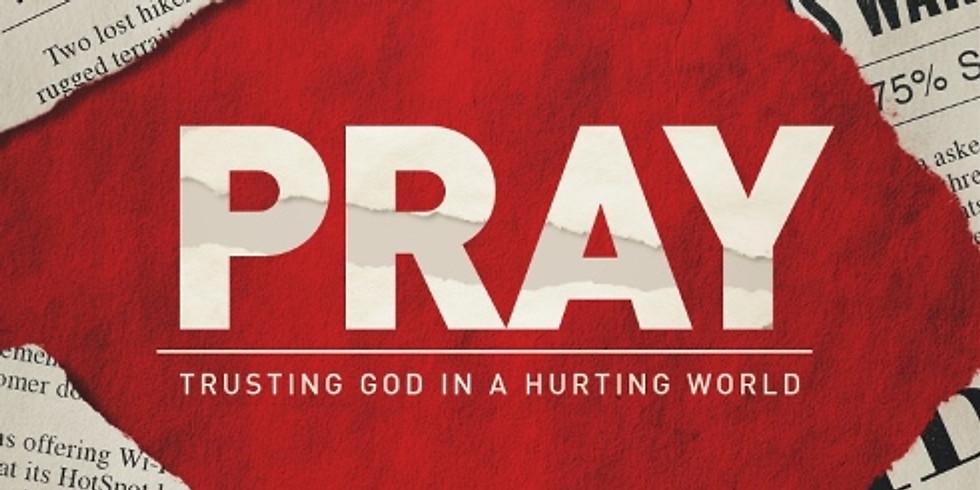 Bible Study & Prayer