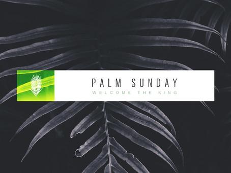 Palm Sunday: Jesus, Our King