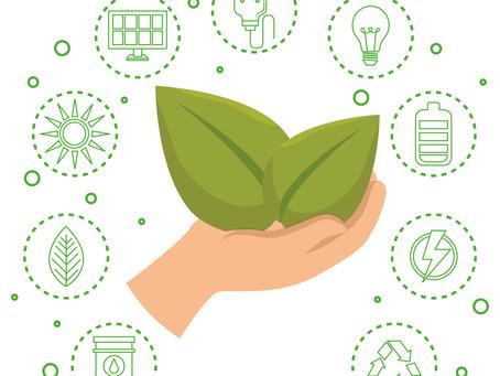Moving Towards Sustainability Pt II