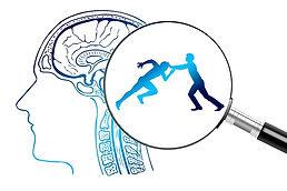 brain-4065092_640.jpg