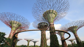 Singapore and Denmark, a natural partnership in green city development