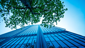 Enterprise Singapore's green financing scheme provides 70% risk-sharing of loans