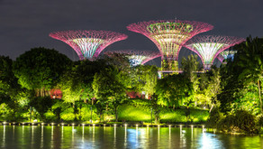 New environmental collaboration between Singapore and Denmark