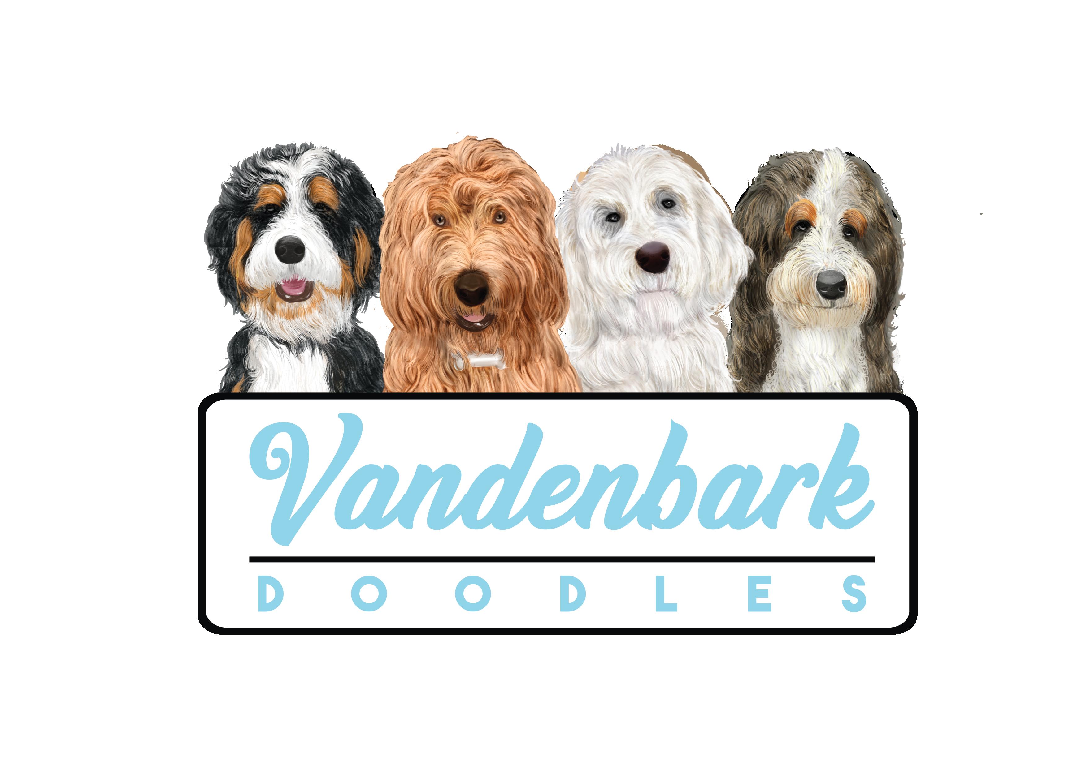 Vandenbark Doodles Bernedoodles Goldendoodles Co
