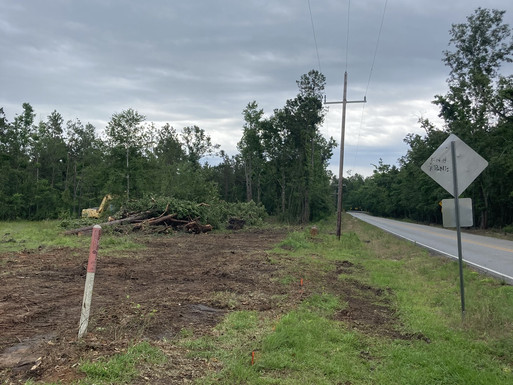 Nibletts Bluff - New