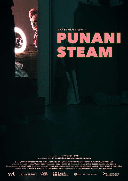 Poster_Punani-Steam_Small-for-web.png
