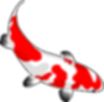 fish-159327_1280.png