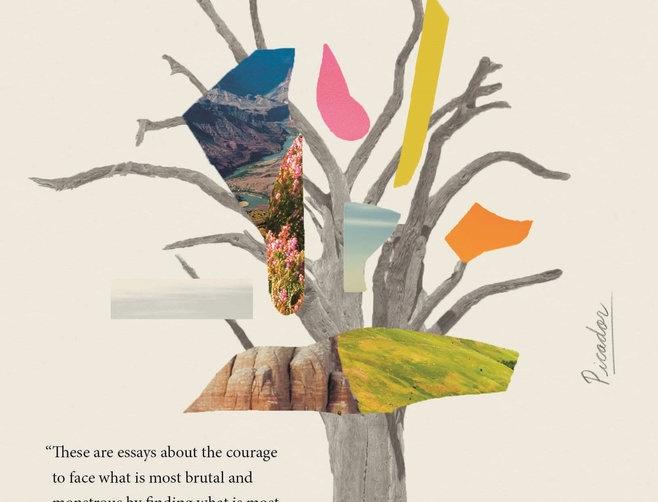Erosion: Essays of Undoing