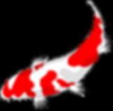 fish-159327_1280 - Yang.png