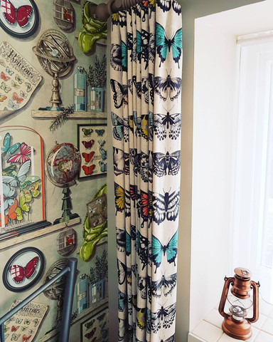 Butterfly Curtains and Wallpaper.jpg