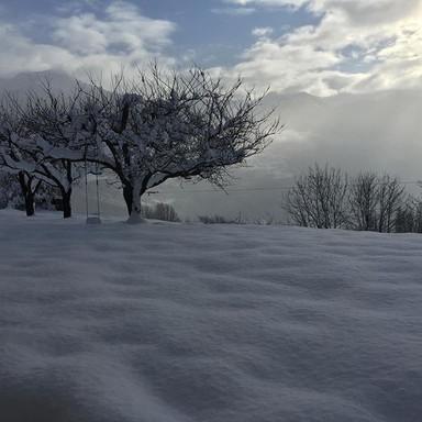 Champs de neige. La balançoire a disparu