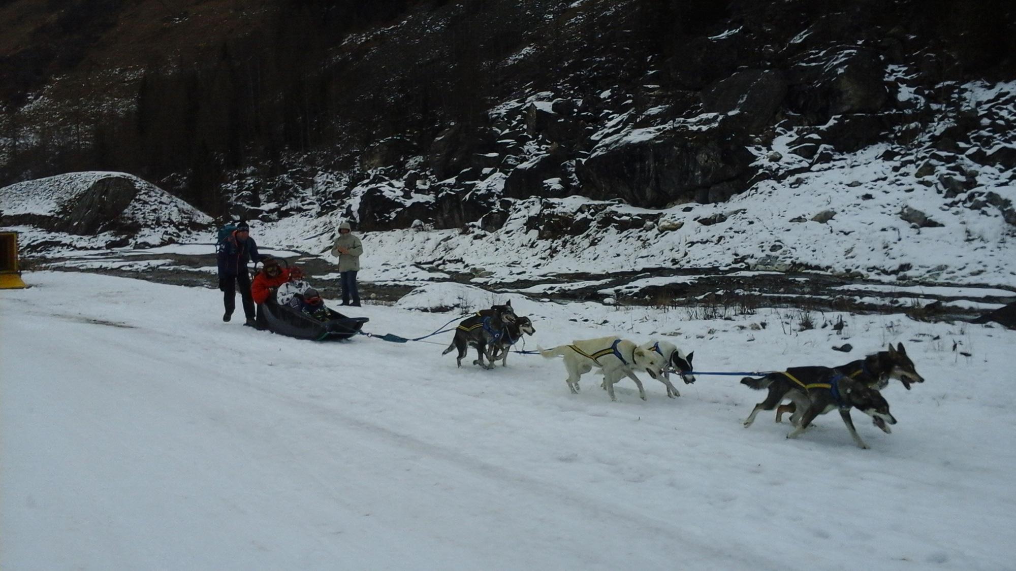 Les Marm'hôtes - Traîneau à chiens