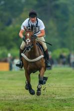 Hästsport / Equestian