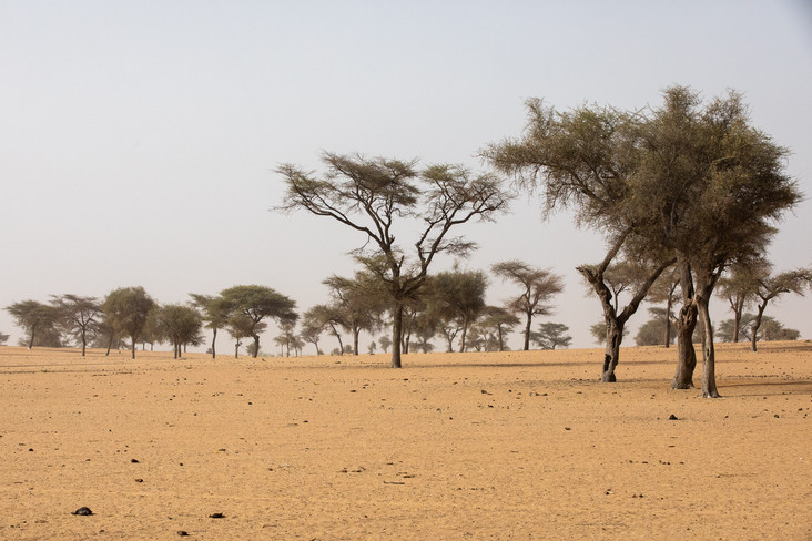 Norra Senegal / North of Senegal