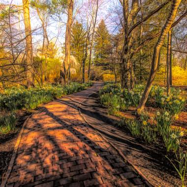 Sayen Garden