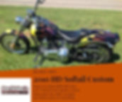 2010 HD Softail Custom.jpg