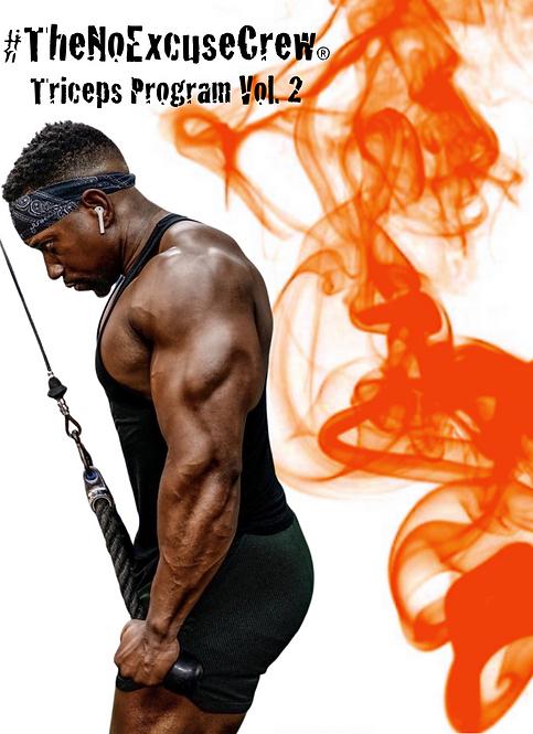 Triceps Program Vol.2